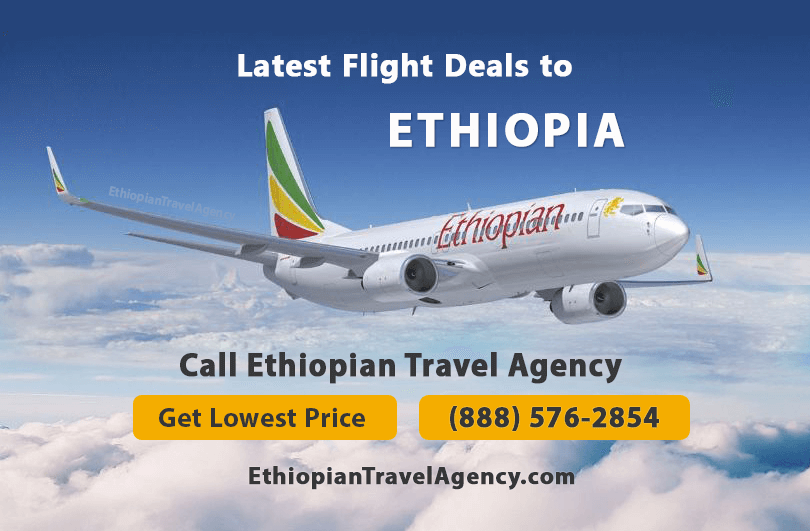 Ethiopian Travel Agency in VA