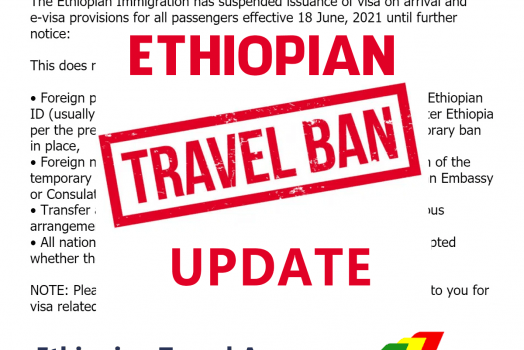 UPDATE: Ethiopia Temporary Ban On Visa on arrival and E-Visa options
